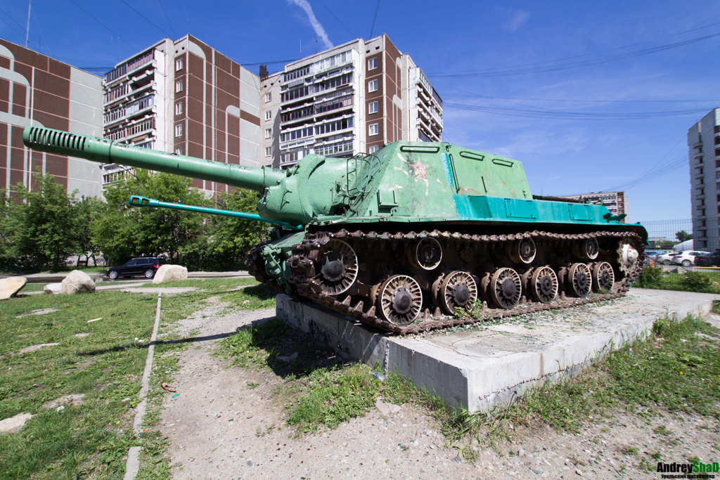 зверобой фото танк