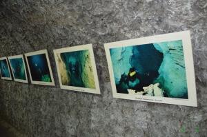 Медвежья пещера в Сафари-парке Геленджика